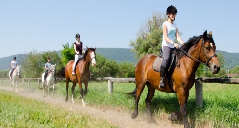 Hungary Horse riding with accommodation by Lake Balaton