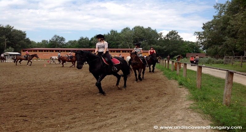 Hungary Children's holiday camps with horse riding
